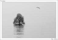 solitude_nb_100422_100-0737