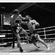 Enfusion - Diogo Calado vs Raphael Llodra